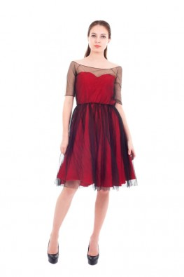 Net  Fabric Half Sleeve Flared Party Dress
