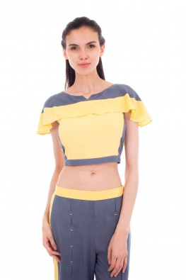 Color Paneled Crop Top